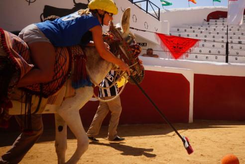 team-building-mijas-burro-polo-exploramas-10