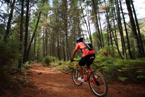 rutas-mountain-bike-aventuras-empresas-exploramas-3