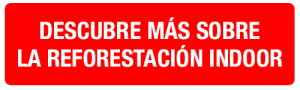 BOTON-descubre-mas-sobre-reforestacion-indoor